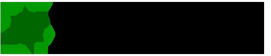 nxu.biz Logo